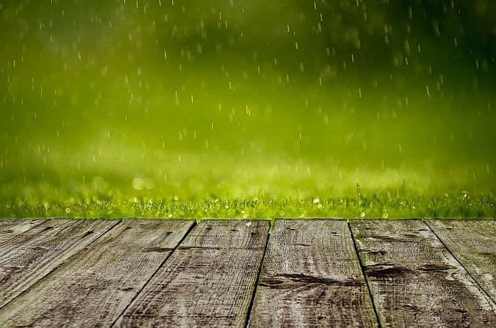 raindrops falling on the grass