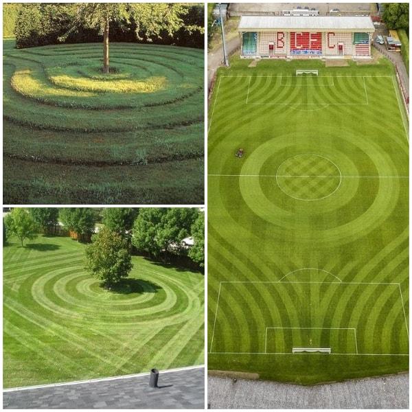 Circular pattern lawn Stripes