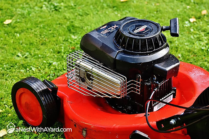 What Kind Of Oil Goes In A Lawn Mower? This Is What You Need To Know