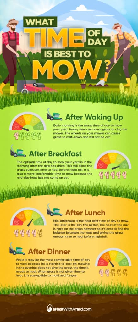 Infograph: What Time Of Day  is Best to Mow?
