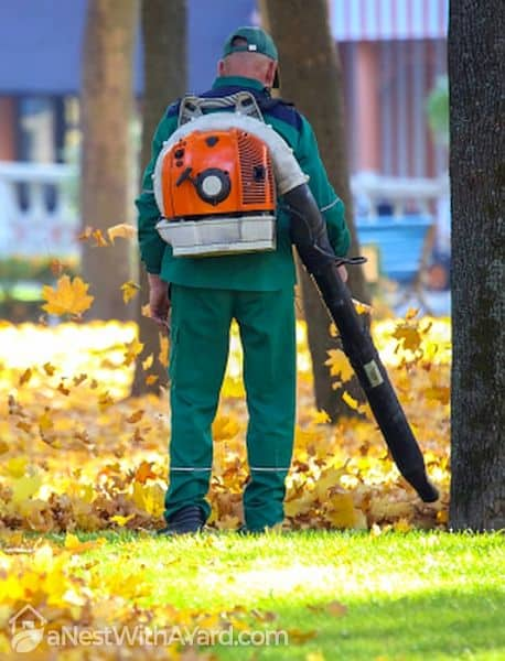 A man operating a backpack leaf blower in the park