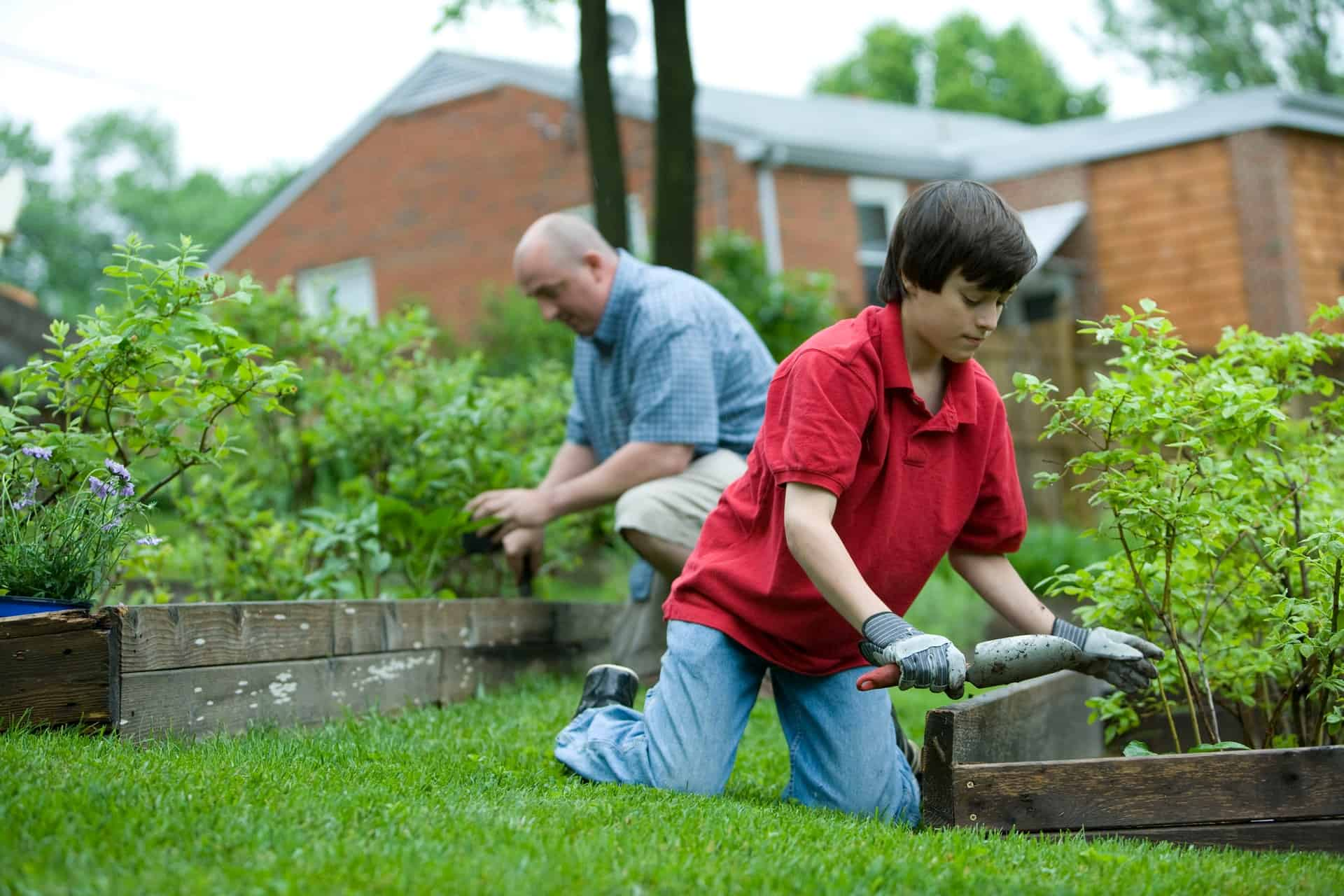 11 Reasons Why Gardening Is Important For You