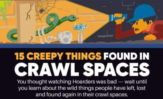 15 creepy things found in crawl spaces