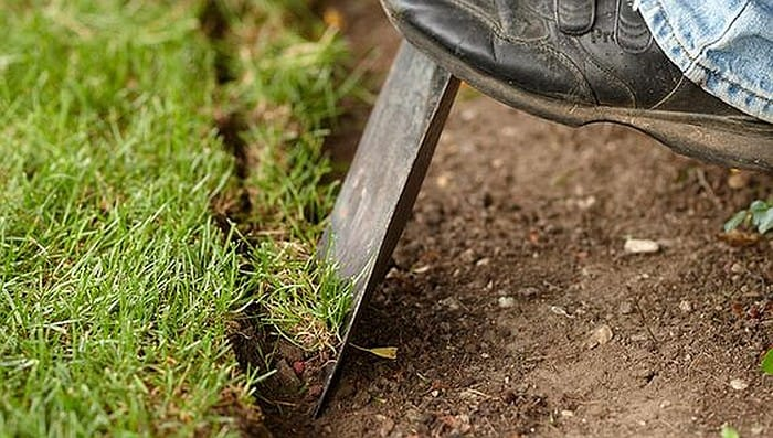 a close up shot of a the edge of a grass lawn being dug to outline the shape of a berm