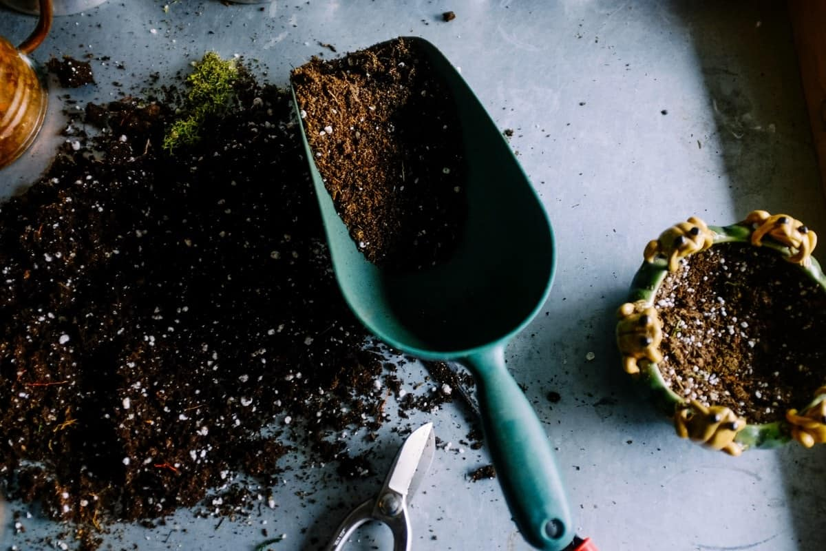 A scoop of the perfect potting soil mixture