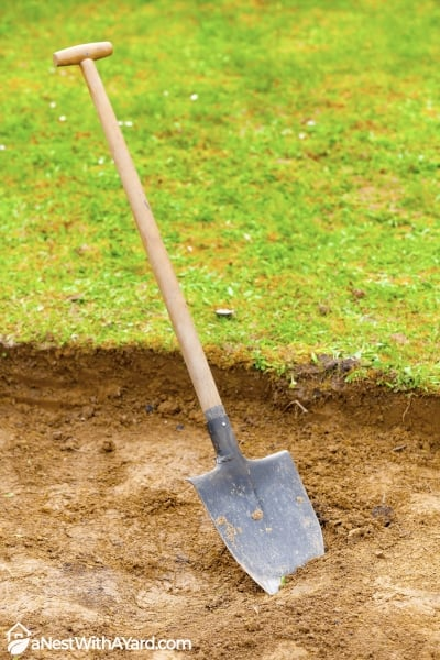 edging with shovel for mulch bed