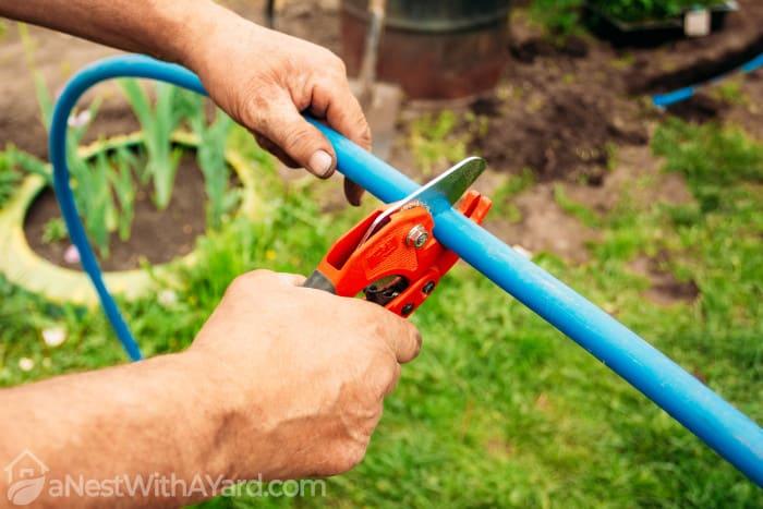 A blue garden hose being cut with garden shears