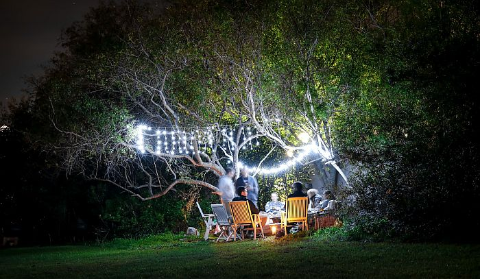 String lights hanging on trees in the backyard