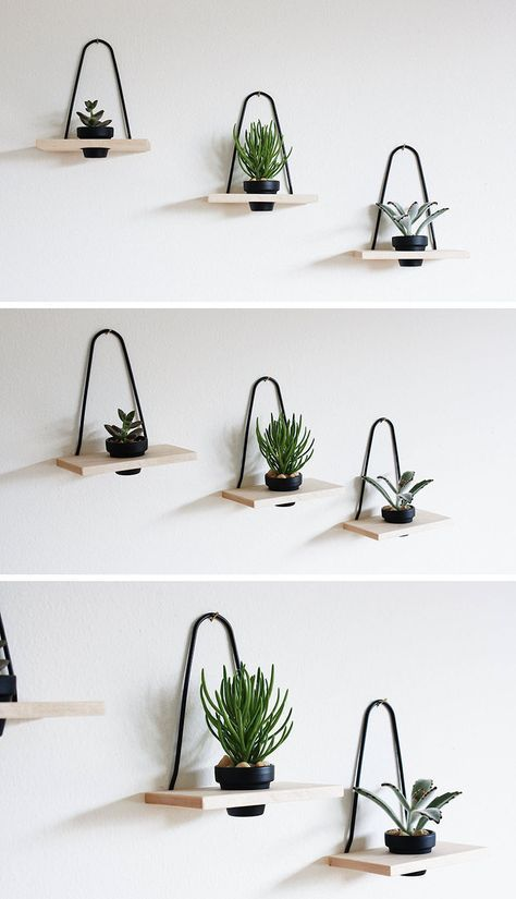 How to hang plants from walls: Mounted plant holders #wall #indoorGardenIdeas #indoorgardendesigns #indoorgardenapartment #apartmentindoorgarden #apartmentgardening #plants