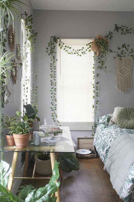 How to hang plants from walls: Draped loosely in walls #wall #indoorGardenIdeas #indoorgardendesigns #indoorgardenapartment #apartmentindoorgarden #apartmentgardening #plants