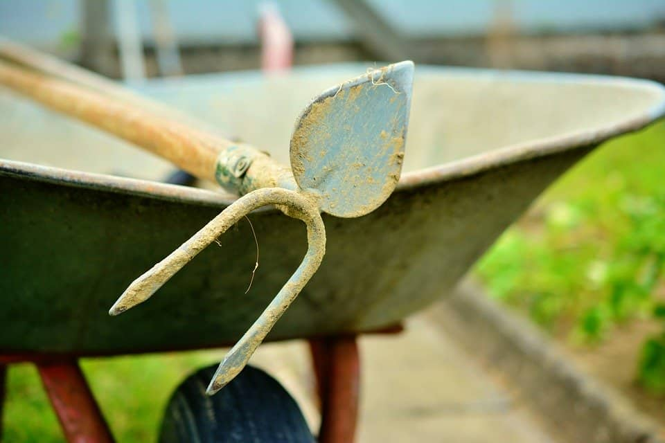 How to use a garden hoe in your garden: Read these 8 helpful tips #garden #gardening #hoe #gardenHoe #tools