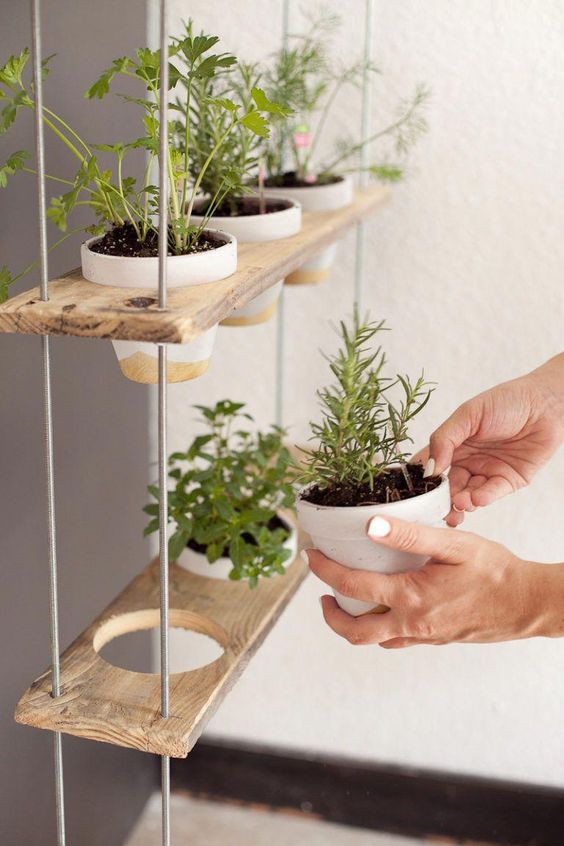 Vertical Herb Garden on shelves  #indoorHerbGarden #indoorGardenIdeas #indoorgardendesigns #indoorgardenapartment #apartmentindoorgarden #apartmentgardening