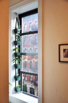 Vertical herbs garden on a wall by the window  #indoorHerbGarden #indoorGardenIdeas #indoorgardendesigns #indoorgardenapartment #apartmentindoorgarden #apartmentgardening