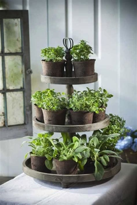 Small vertical herb garden on the table  #indoorHerbGarden #indoorGardenIdeas #indoorgardendesigns #indoorgardenapartment #apartmentindoorgarden #apartmentgardening