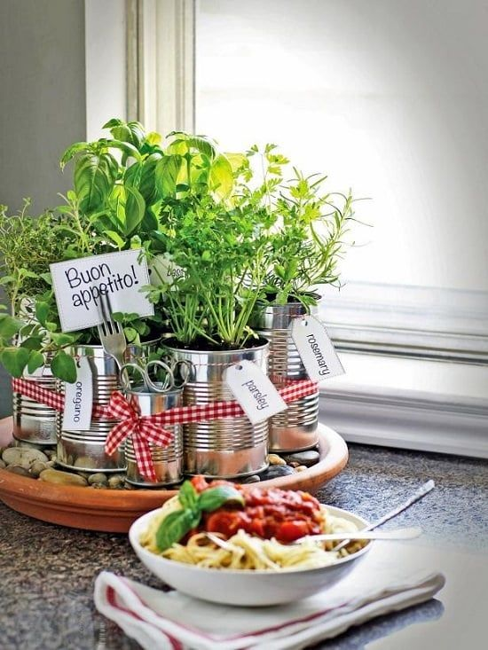 Small herb garden planted in tin jars on your dining table #diy #indoorHerbGarden #indoorGardenIdeas #indoorgardendesigns #indoorgardenapartment #apartmentindoorgarden #apartmentgardening