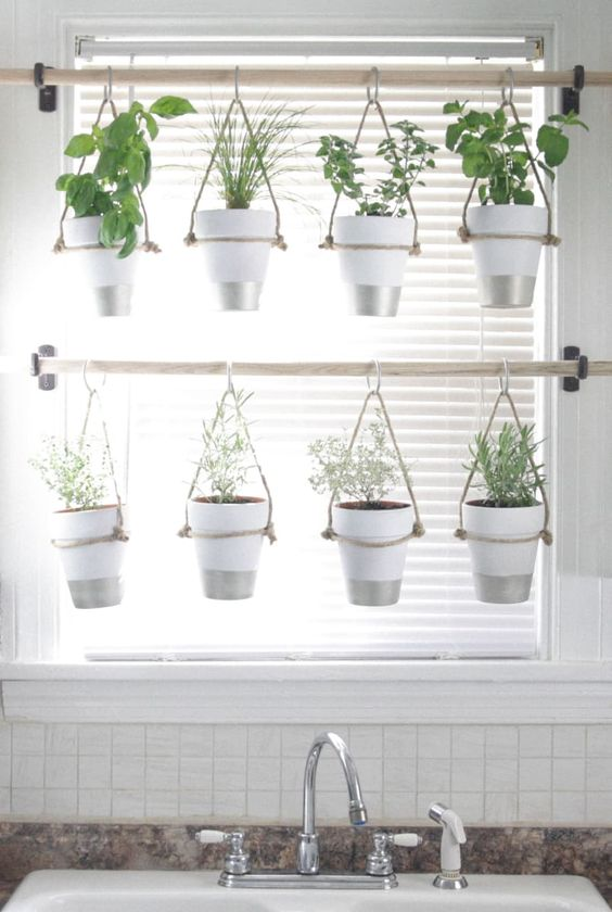 Vertical herb garden near a window on rods  #indoorHerbGarden #indoorGardenIdeas #indoorgardendesigns #indoorgardenapartment #apartmentindoorgarden #apartmentgardening
