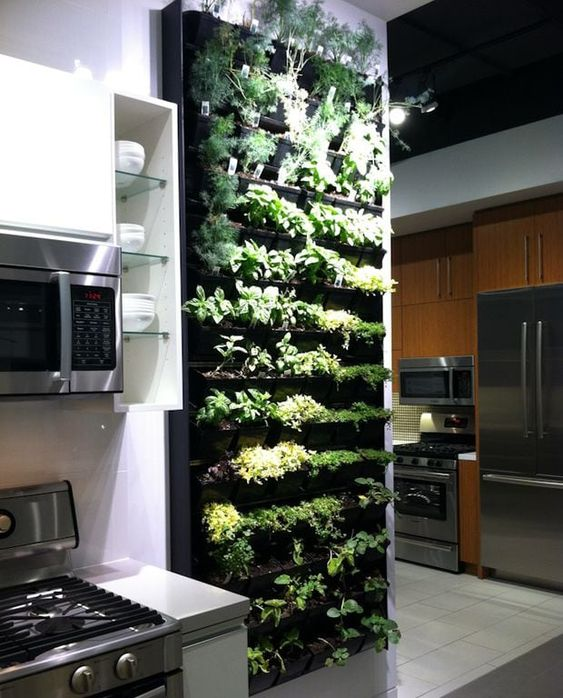 Herb wall shelves  #indoorHerbGarden #indoorGardenIdeas #indoorgardendesigns #indoorgardenapartment #apartmentindoorgarden #apartmentgardening