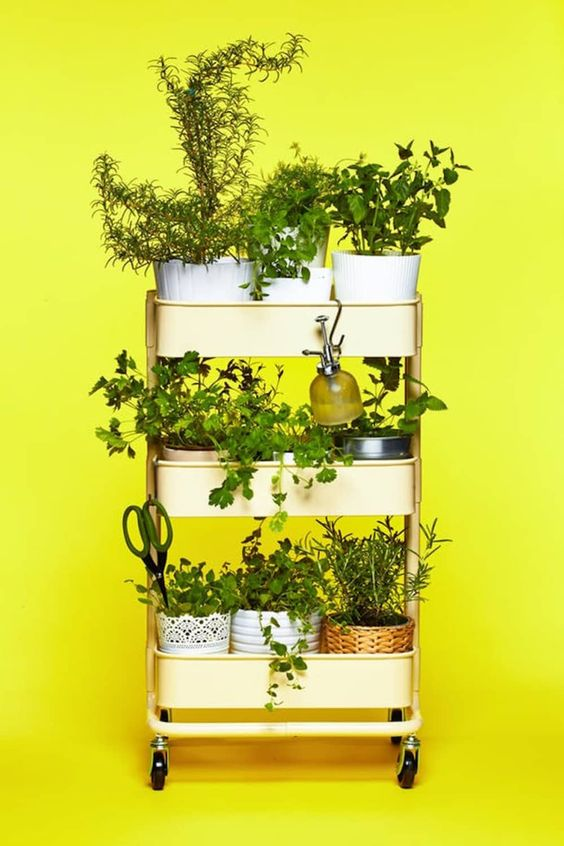 A wheeled vertical shelf with herbs in ports and gardening tools  #indoorHerbGarden #indoorGardenIdeas #indoorgardendesigns #indoorgardenapartment #apartmentindoorgarden #apartmentgardening