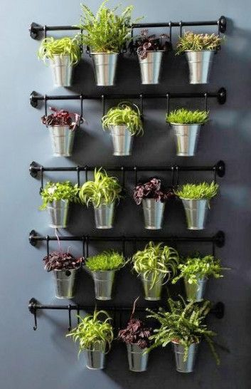 herbs planted in metal pots hanging on rods attached to the wall  #indoorHerbGarden #indoorGardenIdeas #indoorgardendesigns #indoorgardenapartment #apartmentindoorgarden #apartmentgardening