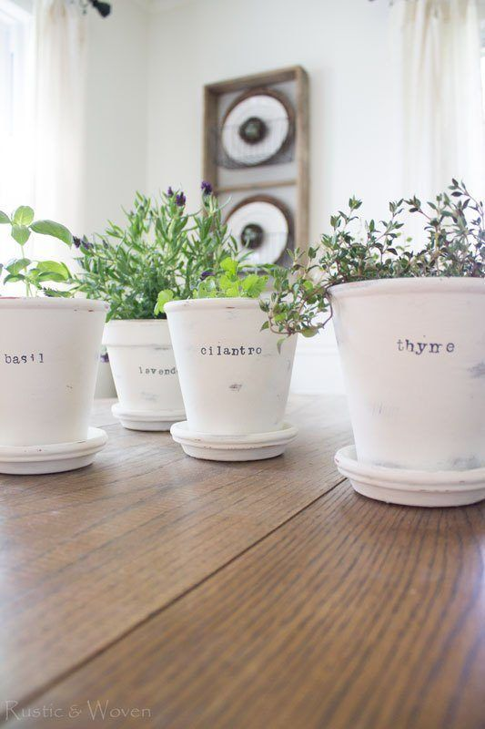 Pretty pots with the herb names written on them  #indoorHerbGarden #indoorGardenIdeas #indoorgardendesigns #indoorgardenapartment #apartmentindoorgarden #apartmentgardening