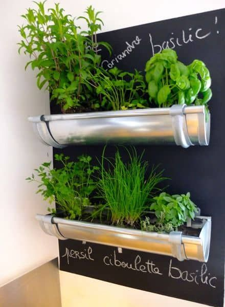 herb shelves attached to a blackboard #diy #indoorHerbGarden #indoorGardenIdeas #indoorgardendesigns #indoorgardenapartment #apartmentindoorgarden #apartmentgardening