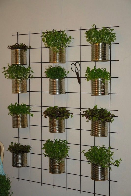 herbs planted in metal pots hanging on metal frames attached to the wall  #indoorHerbGarden #indoorGardenIdeas #indoorgardendesigns #indoorgardenapartment #apartmentindoorgarden #apartmentgardening