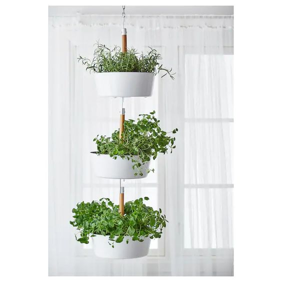 Small vertical herb garden hanging from the ceiling  #indoorHerbGarden #indoorGardenIdeas #indoorgardendesigns #indoorgardenapartment #apartmentindoorgarden #apartmentgardening