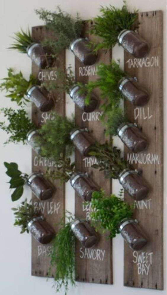 herbs planted in jars and attached to wooden planks on the wall  #indoorHerbGarden #indoorGardenIdeas #indoorgardendesigns #indoorgardenapartment #apartmentindoorgarden #apartmentgardening