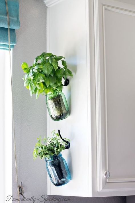 Small Vertical Herb Garden in jars by the kitchen window  #indoorHerbGarden #indoorGardenIdeas #indoorgardendesigns #indoorgardenapartment #apartmentindoorgarden #apartmentgardening