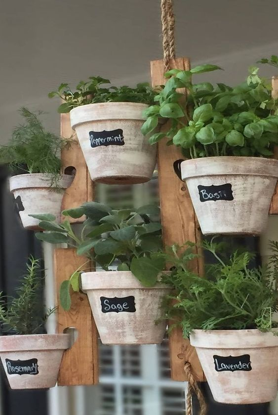 A vertical garden with pretty pots with the herb names written on them  #indoorHerbGarden #indoorGardenIdeas #indoorgardendesigns #indoorgardenapartment #apartmentindoorgarden #apartmentgardening