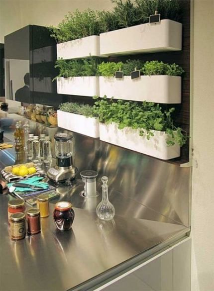 Vertical Herb Garden on shelves in the kitchen  #indoorHerbGarden #indoorGardenIdeas #indoorgardendesigns #indoorgardenapartment #apartmentindoorgarden #apartmentgardening