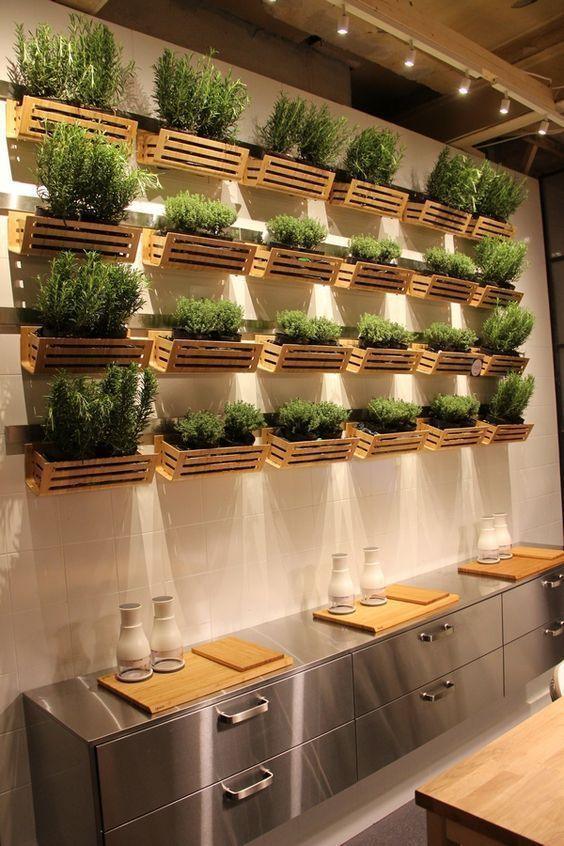 Herb wall shelves with attractive wooden boxes  #indoorHerbGarden #indoorGardenIdeas #indoorgardendesigns #indoorgardenapartment #apartmentindoorgarden #apartmentgardening