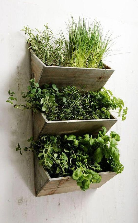 Herb wall boxes made of wood  #indoorHerbGarden #indoorGardenIdeas #indoorgardendesigns #indoorgardenapartment #apartmentindoorgarden #apartmentgardening