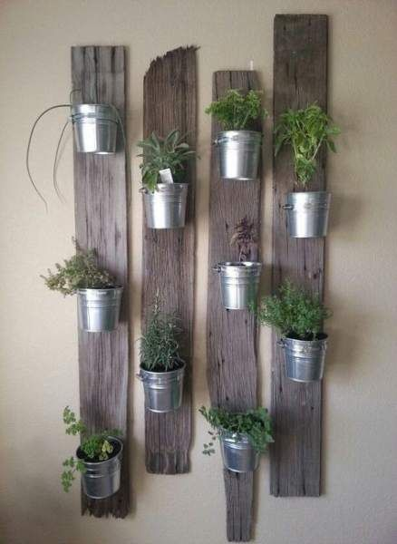 herbs planted in metal pots and attached to wooden planks on the wall  #indoorHerbGarden #indoorGardenIdeas #indoorgardendesigns #indoorgardenapartment #apartmentindoorgarden #apartmentgardening