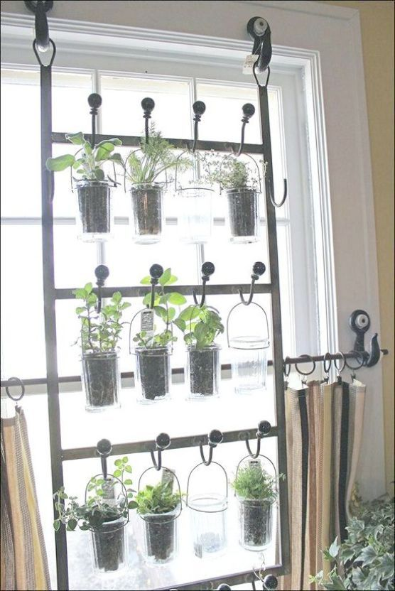 Vertical herb garden near a window hanging on special rods and hooks  #indoorHerbGarden #indoorGardenIdeas #indoorgardendesigns #indoorgardenapartment #apartmentindoorgarden #apartmentgardening
