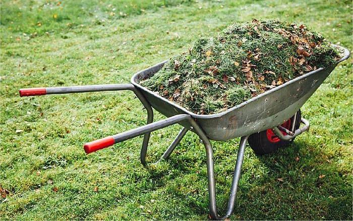 a heap of  grass clippings in a wheelbarrow