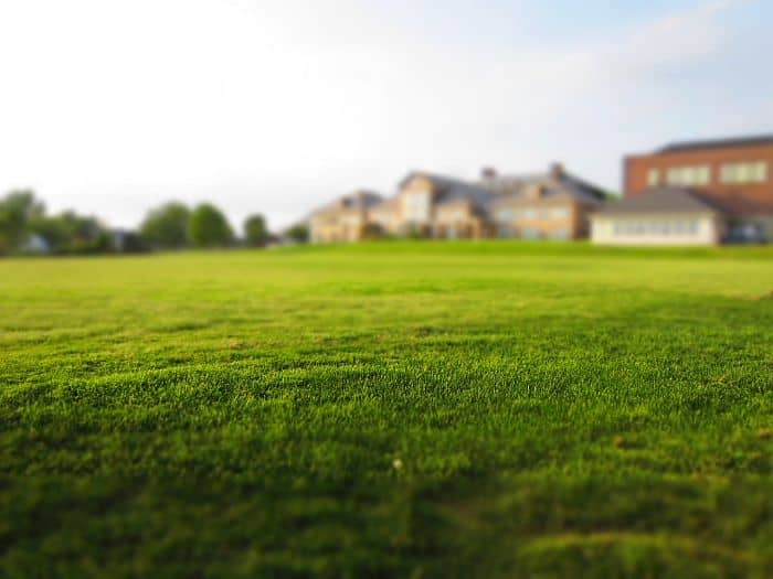 The Best (And The Worst) Time Of Day To Mow Lawn: All You Need To Know