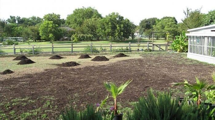 lawn with mounds of sand spread over it