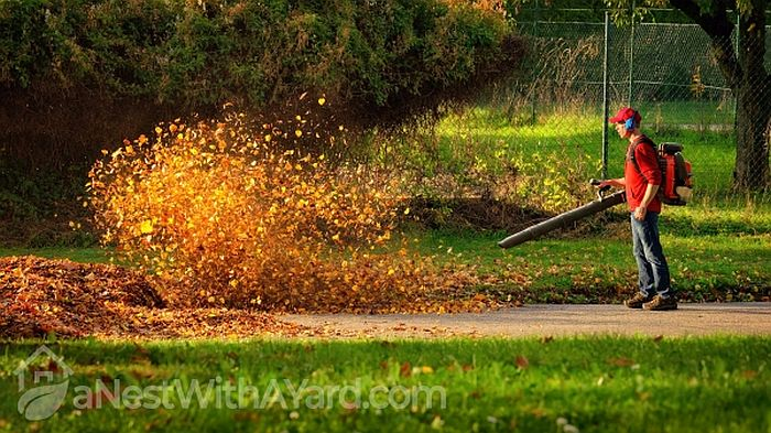 Man operating a heavy duty backpack leaf blower to blow fallen leaves in the park