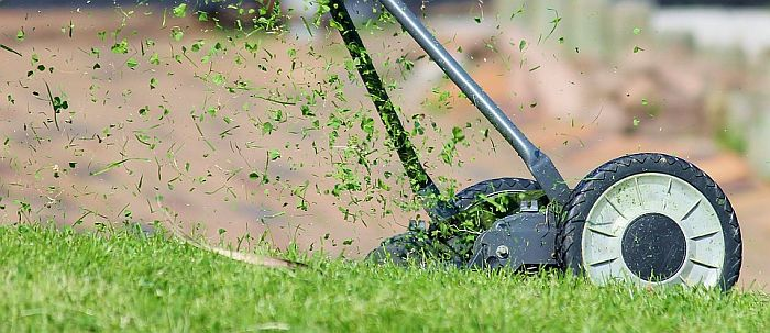Mowing lawn with manual mower