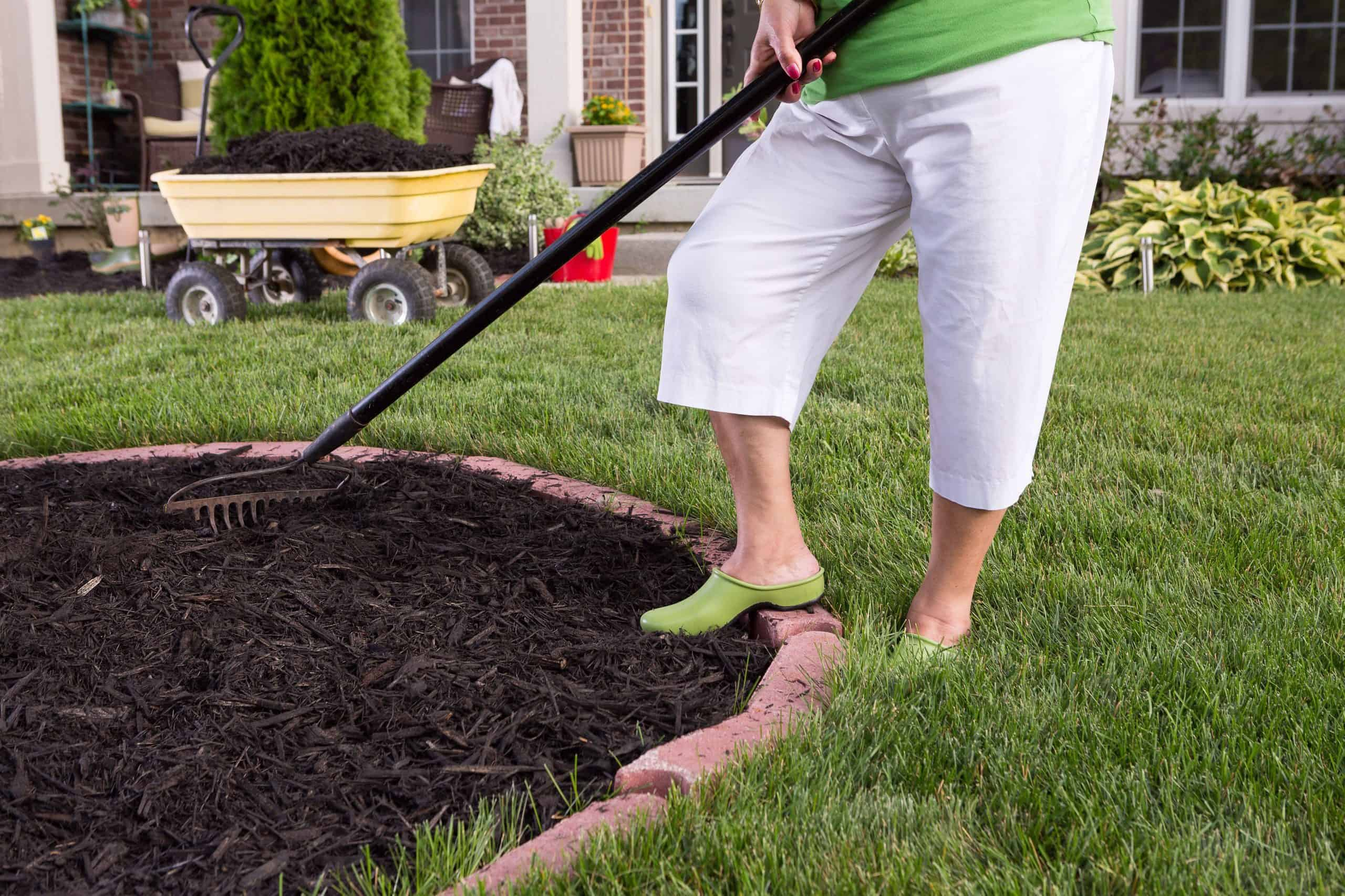 When is the Best Time to Mulch?