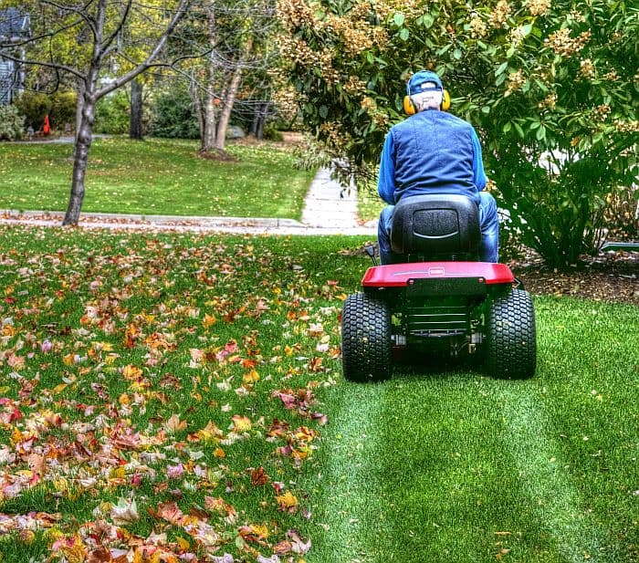 man riding a a lawn mower on a bermuda grass lawn