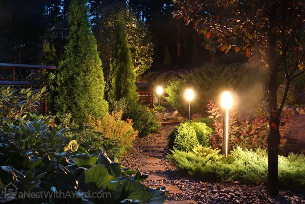 How to choose solar path lights for your backyard? Here's the list of features to consider #backyardLighting #outdoorLights #pathlights #solarlights #solarlighting #backyarddesign #backyard