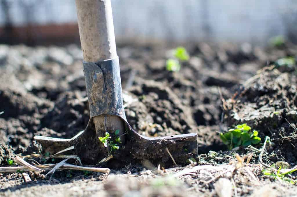 Got mud in your yard? Check out these 9 affordable ideas about how to cover up mud and dirt in backyard #backyard #landscaping #landscapeIdeas #backyardIdeas