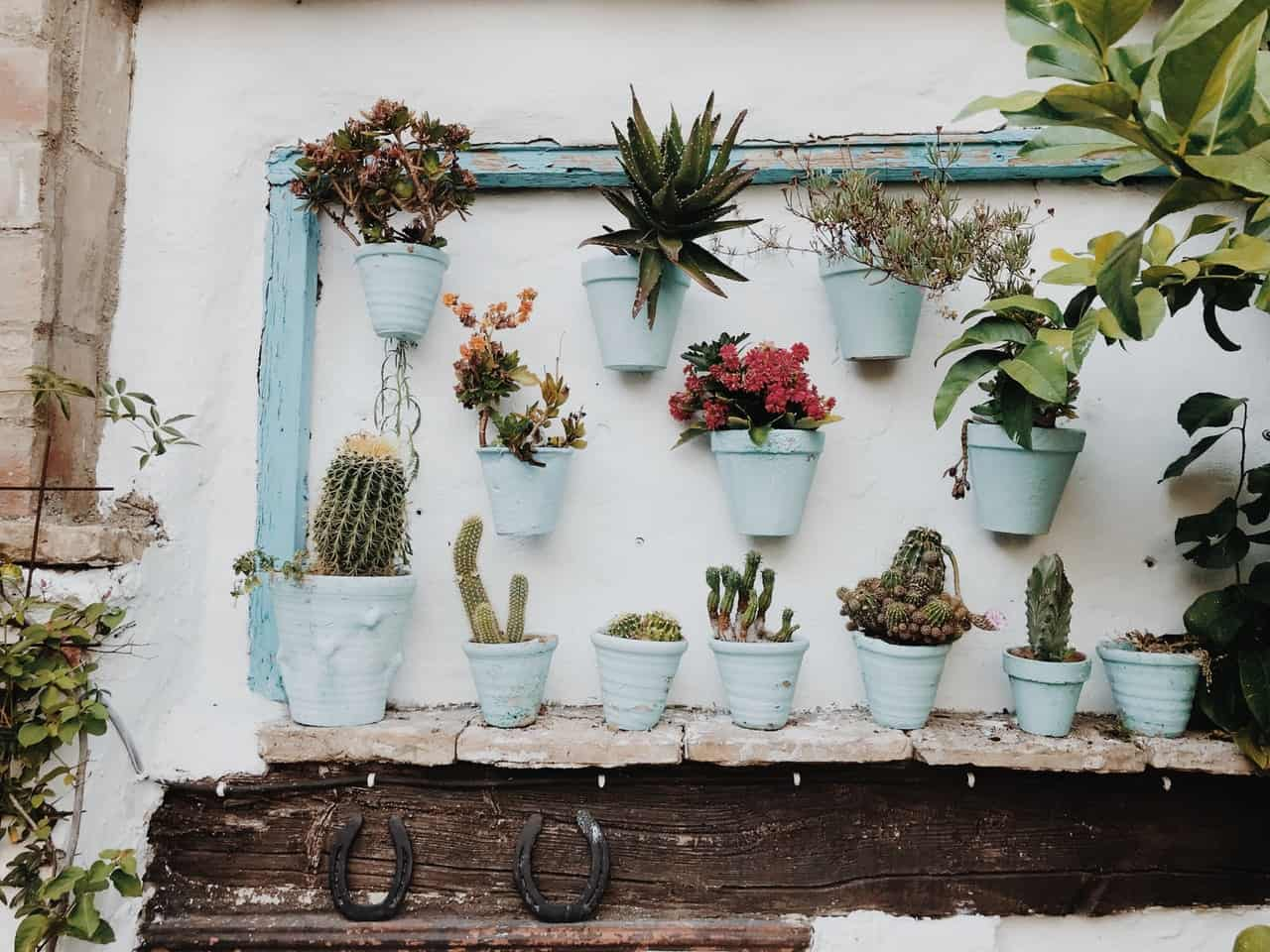 A collage of small garden boxes and shelves #smallGarden #SmallGardenDesign #smallyardlandscaping #gardenIdeas #backyardLandscaping #backyardLandscapingIdeas #landscaping