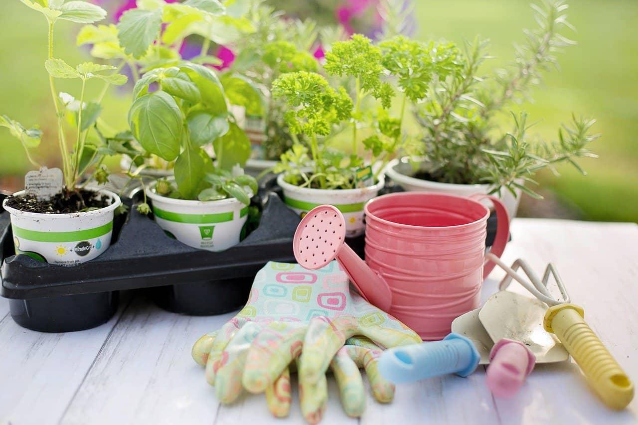 Best Gardening Tools fi 1