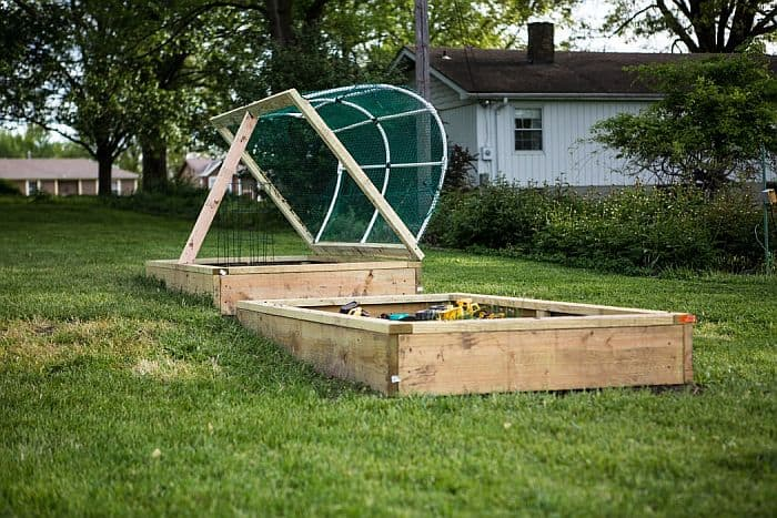 Raised beds in a lawn