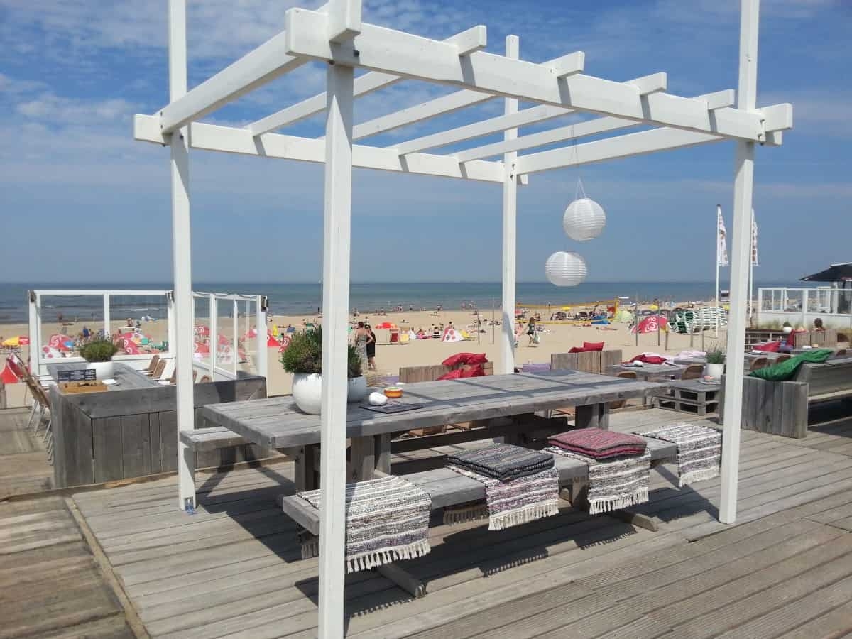 A shot of a pergola over a picnic table by the beach