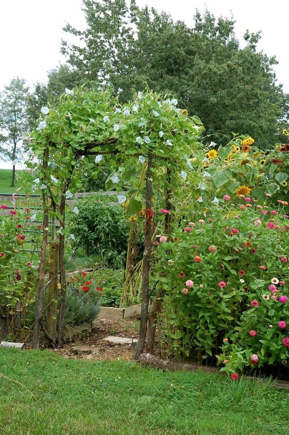 A small garden with an arbor at the entrance  #smallGarden #SmallGardenDesign #smallyardlandscaping #gardenIdeas #backyardLandscaping #backyardLandscapingIdeas #landscaping