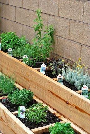 A small garden with multilevel garden beds  #smallGarden #SmallGardenDesign #smallyardlandscaping #gardenIdeas #backyardLandscaping #backyardLandscapingIdeas #landscaping